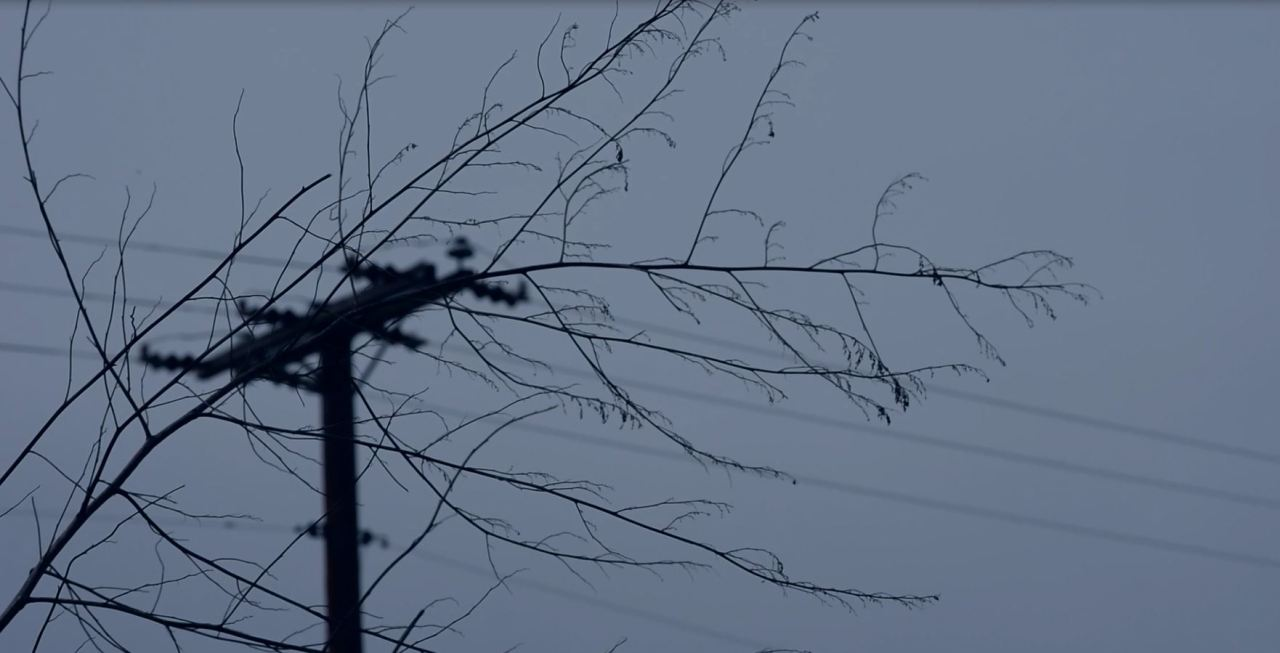 Screenshot for triptych filmfreeway